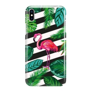 FUNNY CASE iPhone X / XS flamingo
